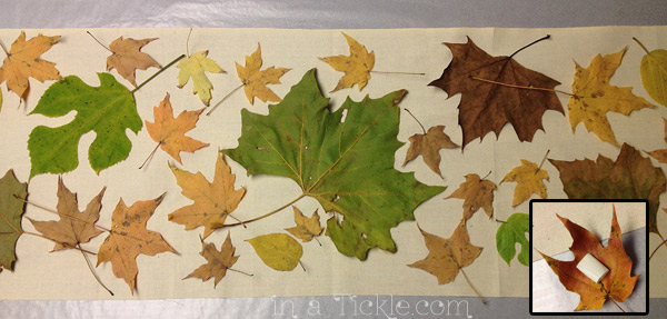 Fall leaves on fabric