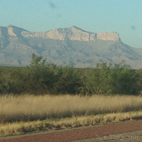 New-Mexico-Landscape