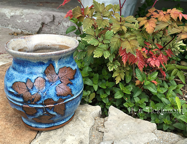 Blue-Pottery-Vase-with-Peppervine-leaf-imprint