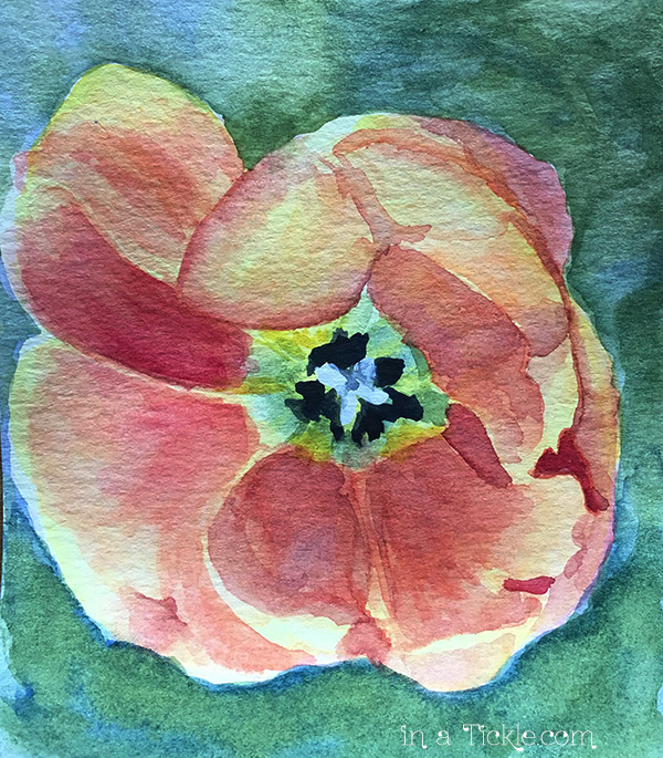 watercolor-tulip